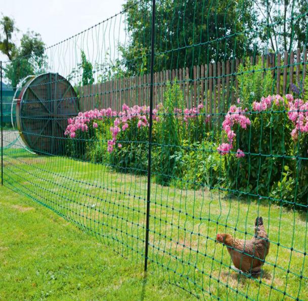 filet de protection parcours de poules