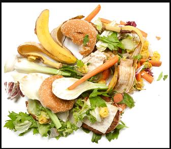Photo de déchets alimentaires pour poules